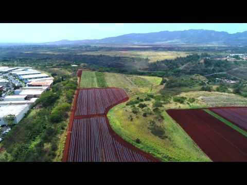 Koa Ridge - Central Oahu New Development