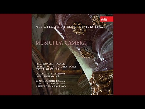 Concerto for Flute, Violin, Bassoon and Basso continuo in C major, (FaWV L:C3) - Allegro