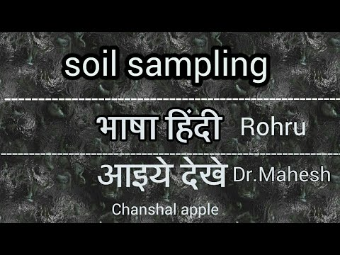 How do you collect soil for soil testing| Dr.Mahesh kumar| आइये देखे कैसे करे |