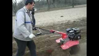 Repeat youtube video Loncin la cultivat
