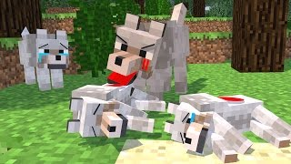 Top 5 Minecraft Life (Minecraft Animation) Wolf Life - Silverfish Life - Squid Life - Fish Life