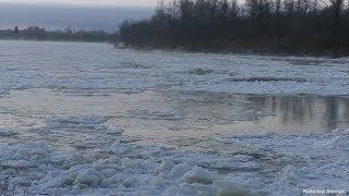 РЫБАЛКА НА ЗАБЕРЕГАХ РЕКИ ЧУЛЫМ зимняя рыбалка первый лед на реке Чулым