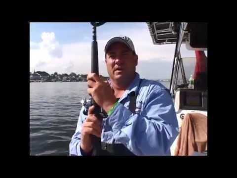 Striped Bass Fishing - Manhattan, NY