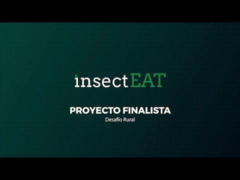 Desafío Rural. Insect Eat.