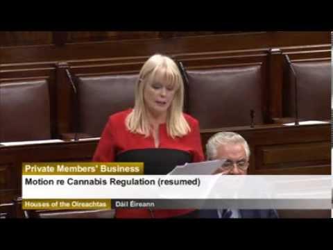 Cannabis Regulation Speech - 06/11/2013