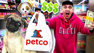 Buying my PUPPY Everything He Touches - Challenge