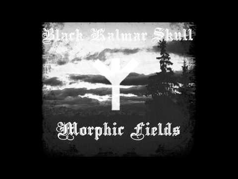 Black Kalmar Skull - Morphic Fields