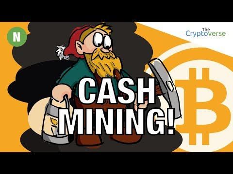Bitcoin Cash Mines ⛏ First EVER 4.6 MB Block & Could Segwit2x Cause Another Split? (The Cryptoverse)