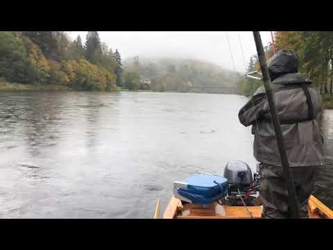 Salmon Fishing On The Dunkeld House Beat
