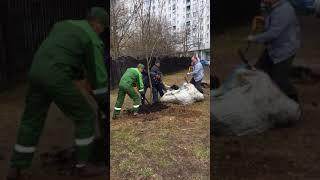 Смотреть видео УРАГАН В МОСКВЕ онлайн