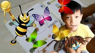 Dạy bé hoc tiếng anh lớp 1 - bài 25 (Dạy bé học bài các con côn trùng và con ong)