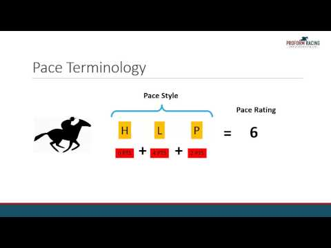 How To Find Pace Statistics For Each Horse In Proform