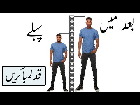 Scientific Way   How to Increase Your Height   Foods Exercise & tips To INCREASE height Fast