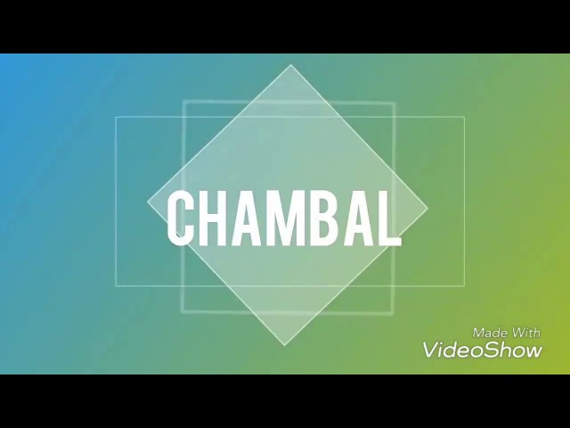 chambal dance funny