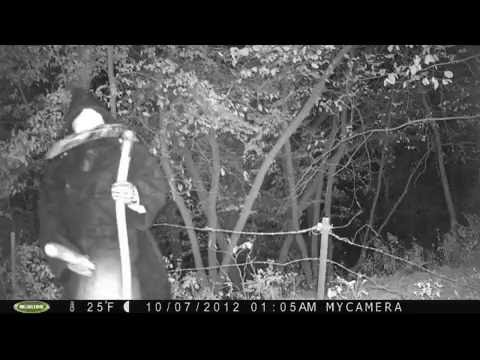 Real Creepy And Unexplainable Trail Cam Photos 4 Youtube