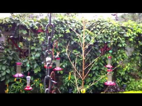 El jard n encantado de san francisco de sales youtube for El jardin encantado madrid