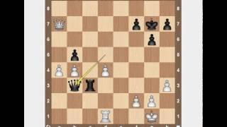 Уроки шахмат по Skype - Николай - Profi-Teacher.ru
