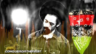 ♕Damian Marley ♕   Roar Fi A Cause ♕Official Audio 2017♕