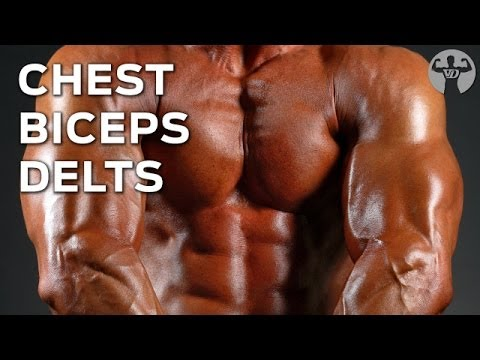 The 8/8/16 Workout (Day 1: Chest, Biceps, Delts) Muscle Building Program