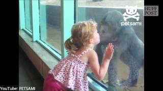 Ingerii lumii: copilasii si animalutele