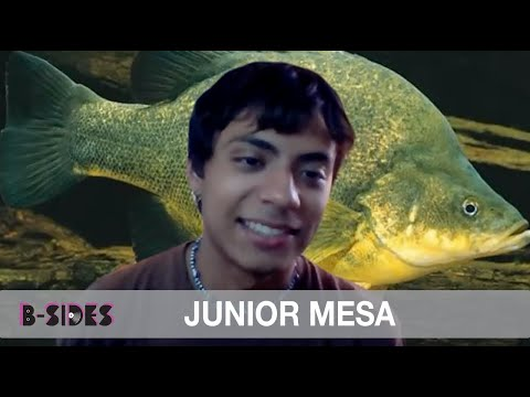 Junior Mesa - Bout With Epilepsy Serves As Inspiration For 'Cirque du Freak'