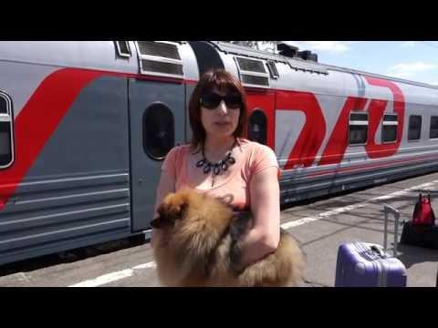 Ярославский вокзал станция метро, как добраться, как
