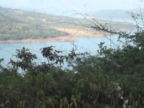 Mulshi 5 to 100 Acres Water view Land for Sale