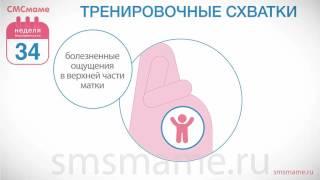 видео 34 неделя беременности