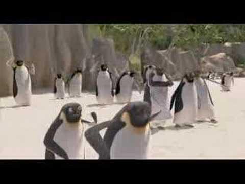 Les rois de la glisse bande annonce 2 streaming vf