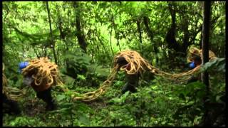 Tendido de Fibra Óptica - San Gabán -