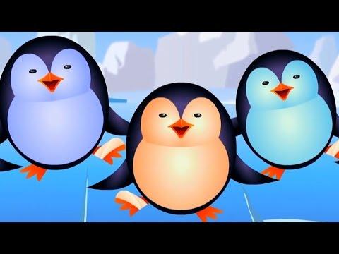five little penguins | nursery rhymes | kids songs | baby rhymes | children videos | kids tv