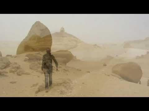 Giza Pyramids, Saqqara, Dahshur, Qarun, Whales Valley, Birqash Camel Market - By Carmine Salituro