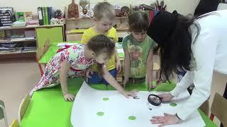 Урок английского в детском саду