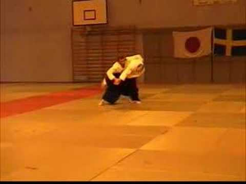 Aikido All sweden seminar Uppsala 2004 - Part 1