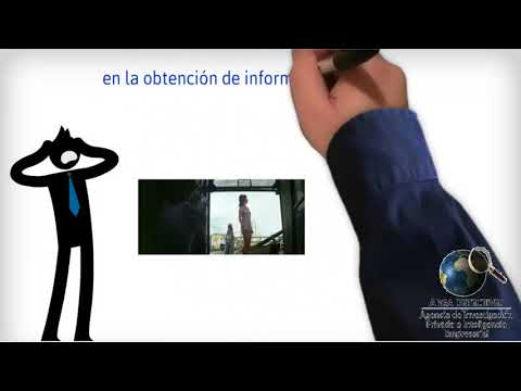 Detectives País Vasco | Detectives privados País Vasco | Grupo Arga Detectives.