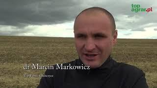 Żniwa soi na półmetku: dobre plony pomimo trudności