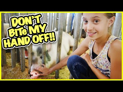 🐷FUN at the CARNIVAL🐷 RORY KISSES A BUNNY 🐰 FAMILY VLOG | SMELLY BELLY TV