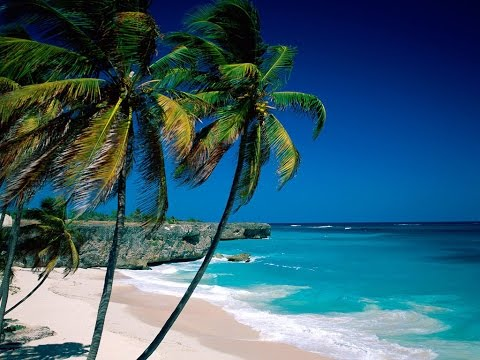 Sommertraeume zum Relaxen -
