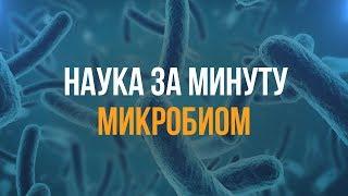 НАУКА ЗА МИНУТУ_Микробиом