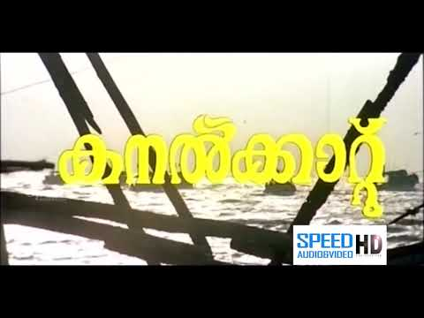 Malayalam superhit family entertainer full...