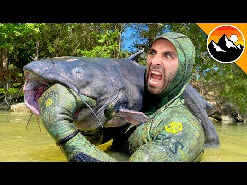 BITTEN - by a GIANT CATFISH!