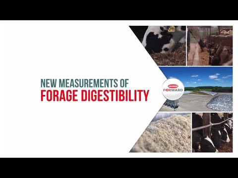 New measurements of forage digestibility