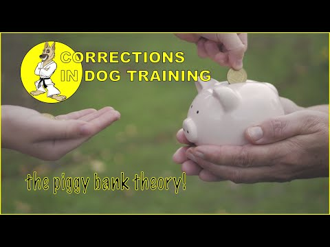 Correcting Your Dog Properly - The Piggy Bank Theory