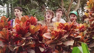 Joe Hertler & The Rainbow Seekers - The Garden (Official Video)