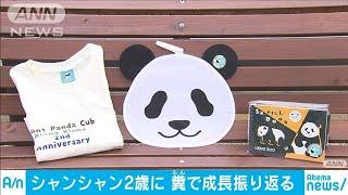 シャンシャンきょう2歳 誕生日のお祝いに長蛇の列(19/06/12)