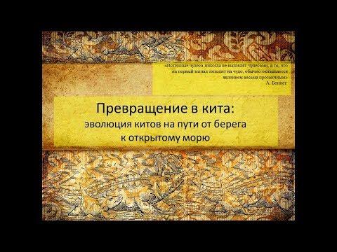 Константин Тарасенко «Превращение в кита»