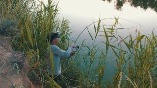 ЛОВЛЯ САЗАНА НА ЖМЫХ В ЗАРОСЛЯХ КАМЫША Пришлось побегать Нереальная жара и рыбалка в Астрахани