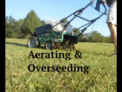 Aerating & Overseeding a Lawn - How To