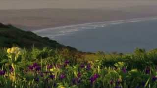 Beautiful Hawaiian Music! Beautiful Hawaiian Scenery!