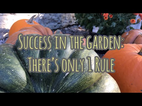 Success In The Garden: There's Only 1 Rule